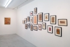 Indian Drawings, Selected by Jane Kim & Alexander Gorlizki